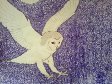 """Ghostly Owl, 18""""X12"""", Pencil and Ink"""