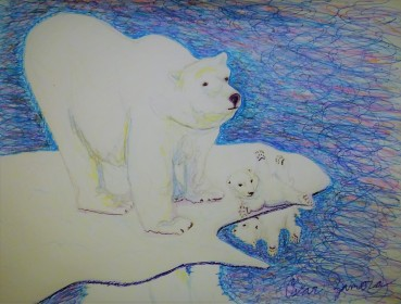 Polar Bear Reflect
