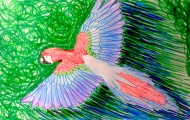 Sorrowing Parrot
